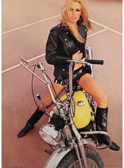 "Original Vintage Sexy French Poster ""Brigitte Bardot"""